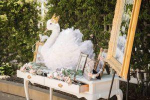 Fiesta para Niña de Ballet y Cisnes