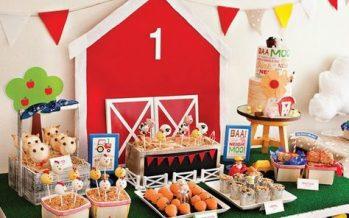 Decoración de la granja de Zenon para cumpleaños