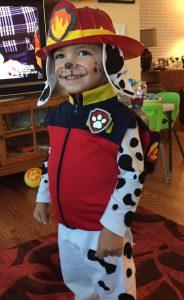 Disfraces de paw patrol para fiestas infantiles